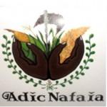 Apoio ao desenvolvimento das Iniciativas Comunitarias